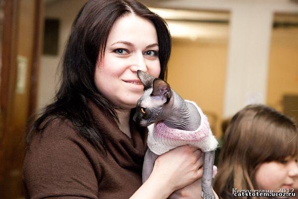 Кошка канадского сфинкса